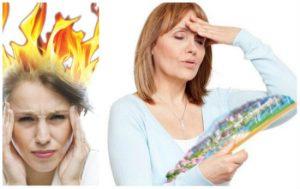 Mẹo chữa bốc hỏa ở phụ nữ bằng mầm đậu nành Thanh Mộc Hương