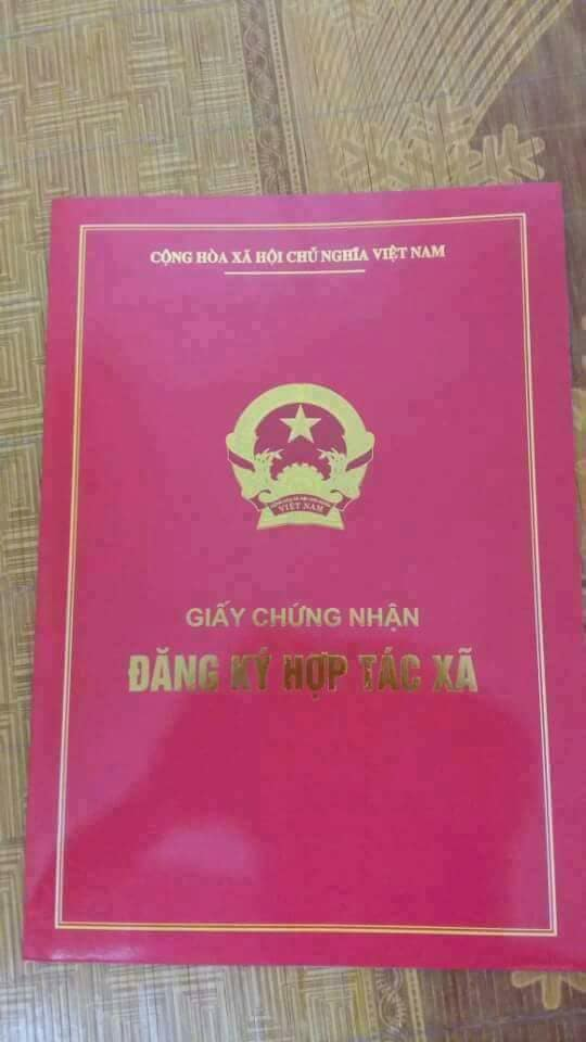 Xác nhận thông tin về Thanh Mộc Hương lừa đảo